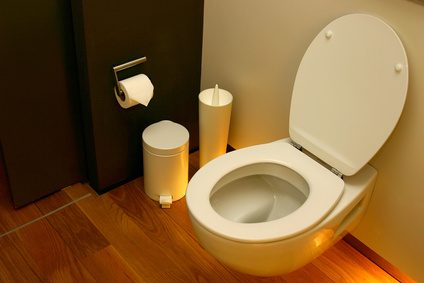 nettoyant wc