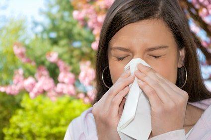 rhume des foins et allergie au pollen
